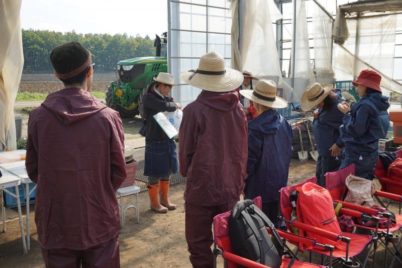 農場ピクニック長いも掘り体験収穫へ